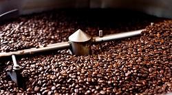 Rang gia công hạt cafe - Trí Việt Coffee