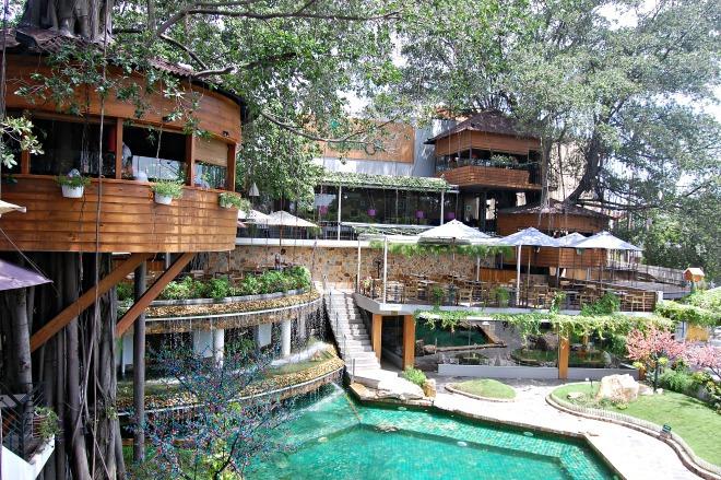 Ngôi nhà trên cây là địa điểm thú vị nhất của Du Miên cafe